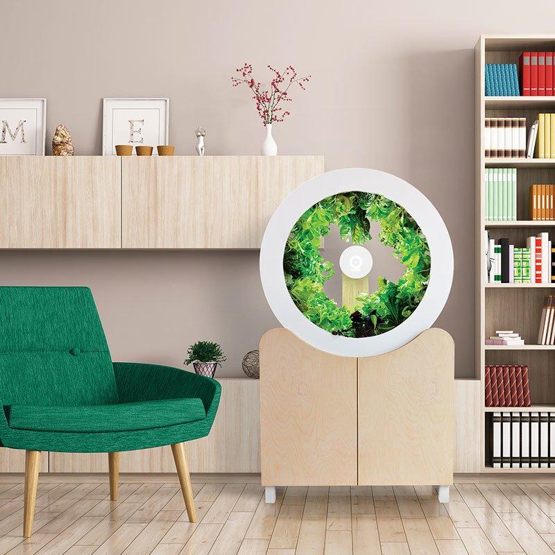 o 39 garden un potager d 39 int rieur design forbes france. Black Bedroom Furniture Sets. Home Design Ideas