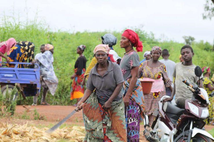 Projet Afrique Fond vert R20 changement climatique