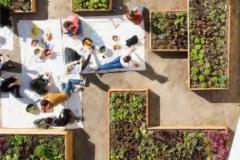 Projet immobilier habitat participatif My Wood Loft Groupe Valoptim