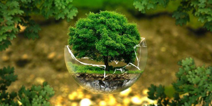 fonds durables
