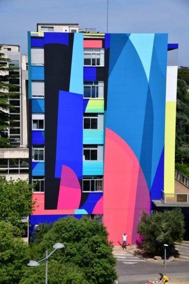 Vitae ZEST Hopital Gui de Chauliac 2019
