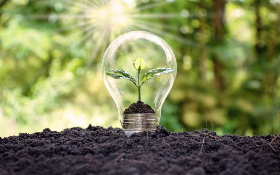 Économie d'énergie: comment allier environnement et satisfaction client